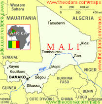 THE UN MISSION IN MALI: A BRIEFING PAPER